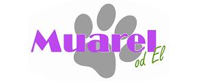 Muarel | Designové obojky a vodítka
